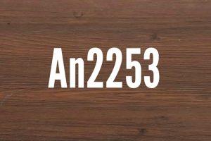 An2253
