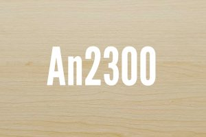 An2300