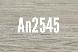An2545