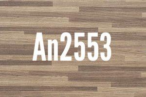 An2553