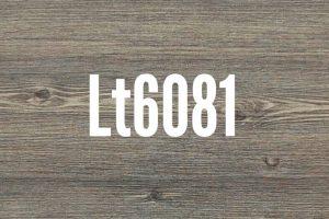 LT 6081